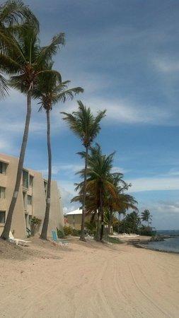 Sugar Beach Condominiums : view from the beach