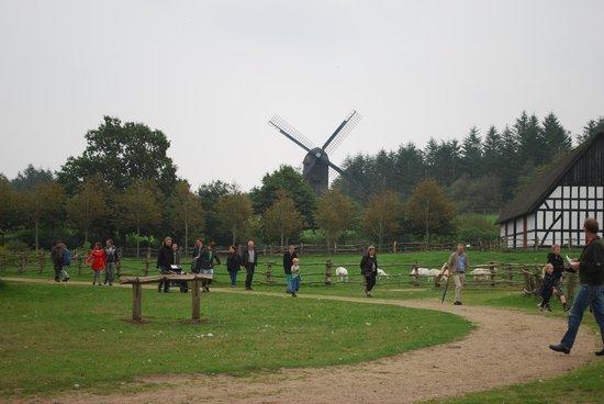 Frilandsmuseet Hjerl Hede