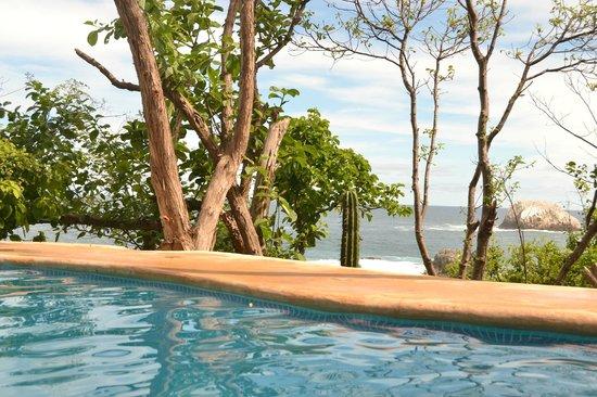 Casa Sol Zipolite : pool