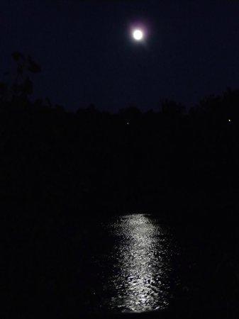 The Bradford B&B Inn: Moonlight view from the Inn