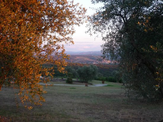 Fattoria Castellina: the grounds and the view