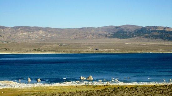 Mono Basin Scenic Area Visitor Center: visitor center lookout