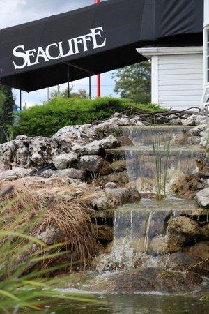 Seacliffe Inn: Beauty