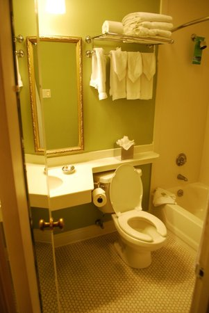 Bienville House: Bathroom