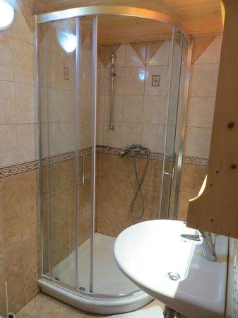 Alpik Apartments at Lake Bohinj: Terrific shower