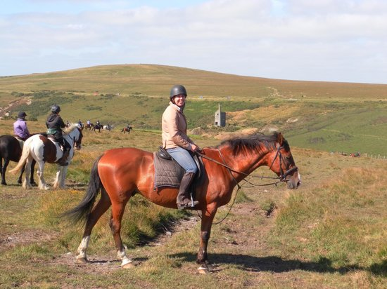 Cholwell Riding Stables: Beautiful views