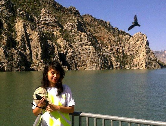 Buffalo Bill Dam : The Complex see the bird....this was done with a blackberry