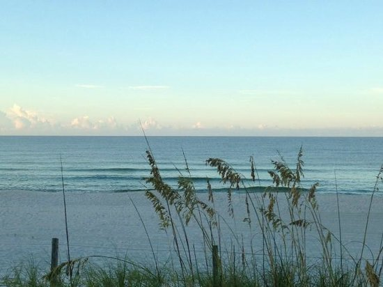 Latitude 29 Condominium: Our view from the wall!