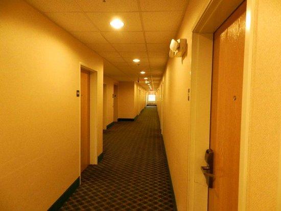 Howard Johnson Inn and Suites Elk Grove Village O'Hare: Corredor