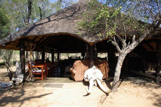 Pungwe Safari Camp : tenda comune pasti & relax