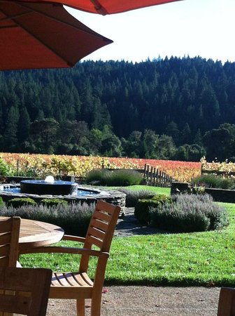Goldeneye Winery: Goldeneye in October