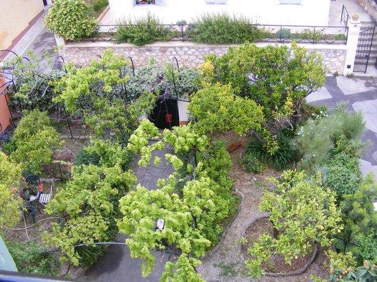 Hôtel de la Darse : Vue sur le jardin arrière