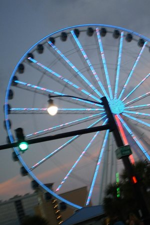 Serendipity Inn: skywheel at nite