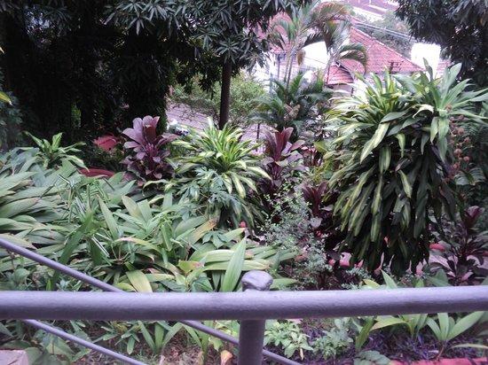 Bossa in Rio Hostel: vista do jardim da entrada