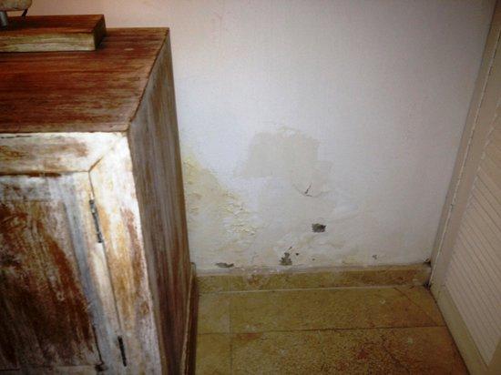 Villa E Seminyak: Just a bit of maintenance required