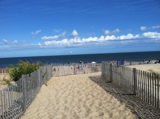 Dewey Beach, DE: The beach
