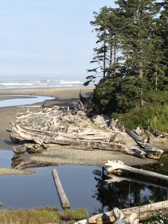 Kalaloch Lodge in Olympic National Park: View of Kalalock Creek and Pacific Ocean from the Kalaloch Lodge