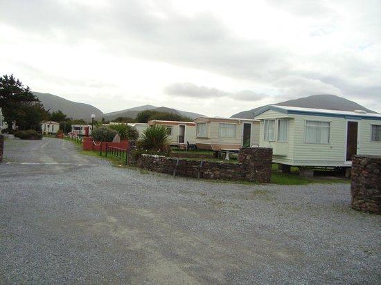 Anchor Caravan Park CastleGregory: Caravan area