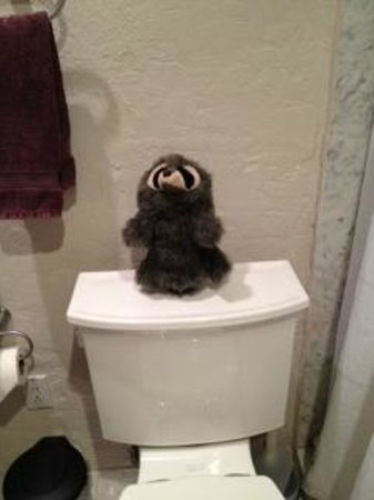 Rio Sierra Riverhouse: Stuffed Animal Atop The Toilet