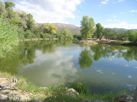 Tanque Verde Ranch: Fishing