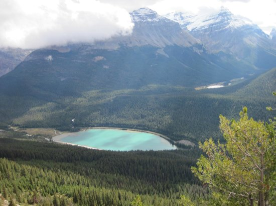 Auberge Kicking Horse B&B: View of Wapta Lake from Pagett Lookout In Yoho National Park