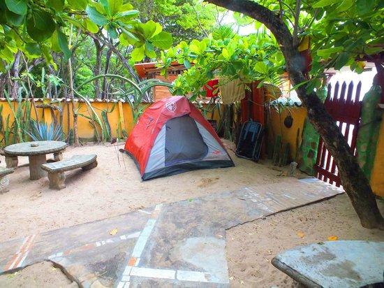 Matilda's: My campsite