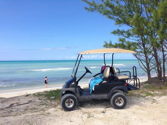 Resorts World Bimini: $50 golf cart rental. Worth it