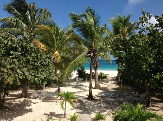 Villa Flamenco Beach: View from patio