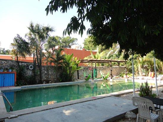 Nomadas Hostel: piscina!