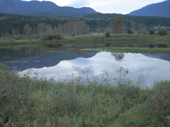 Courthouse Inn Revelstoke: Reflection on river walk
