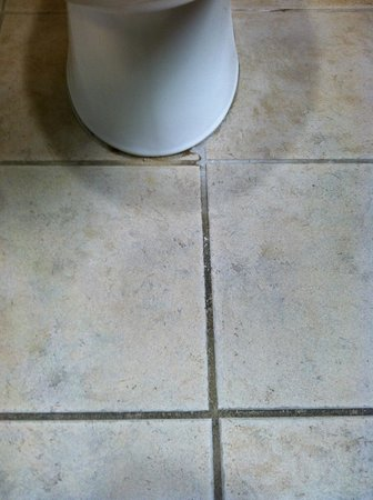 St Augustine Hotel & Suites: Different colored grout from urine stains