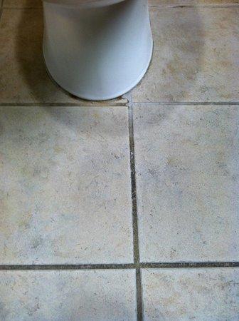 سانت أوجاستين هوتل آند سويتس: Different colored grout from urine stains