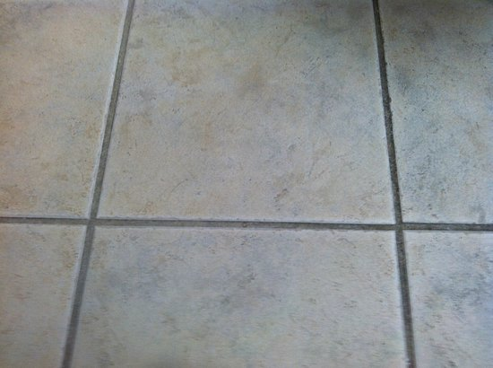 St Augustine Hotel & Suites: Different color grout from urine