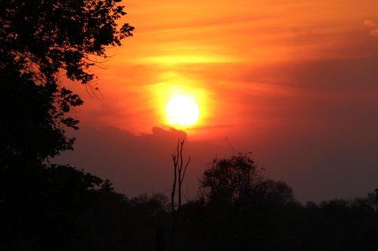 Nsolo Bush Camp - Norman Carr Safaris: Sundowner Sunset