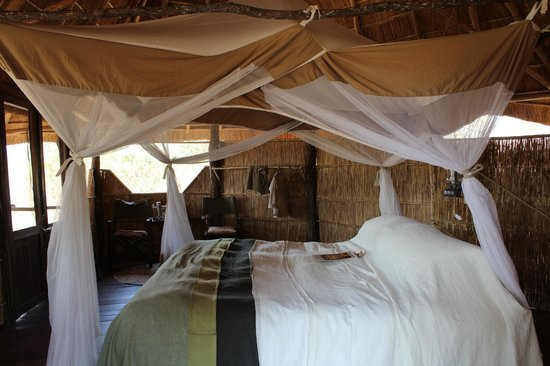 Nsolo Bush Camp - Norman Carr Safaris: View of our room at Nsolo