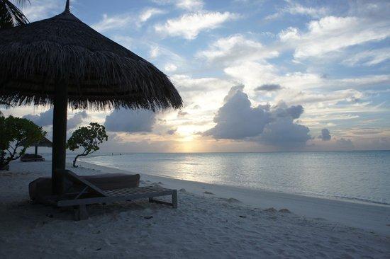 Cocoa Island by COMO : Beach