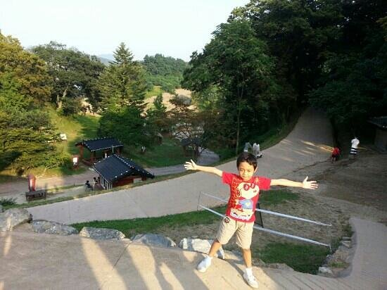 Gongsanseong: from the top of the gate
