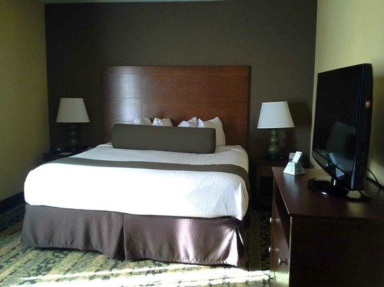 Best Western Plus Tupelo Inn & Suites: Very large rooms. Very clean.