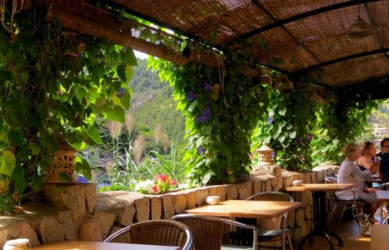 The Village Cafe : General view of lovely outside seating