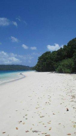 Ujung Kulon National Park : Pulau Peucang