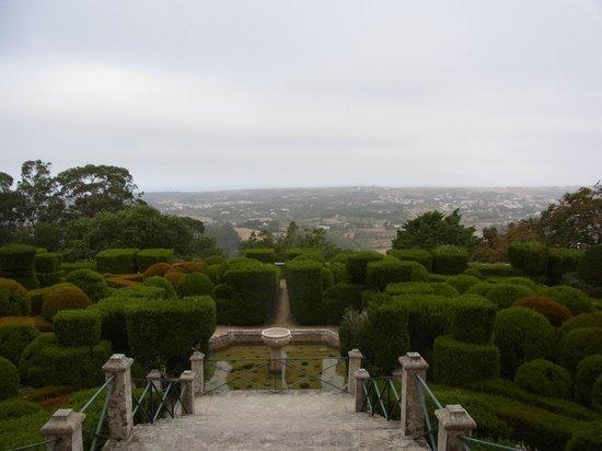 Tivoli Palácio de Seteais: 眺め