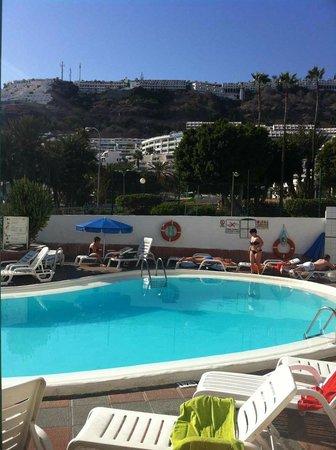 Niza Apartments: Pool- och solområdet
