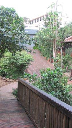 Mackaya Bella Guest House : Garden