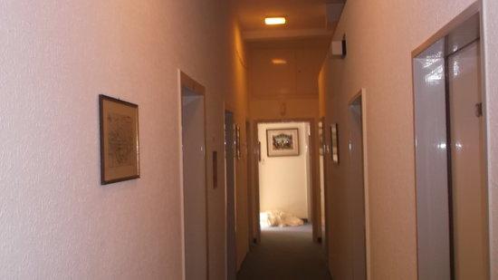 Hotel Basler Hof : corridoio
