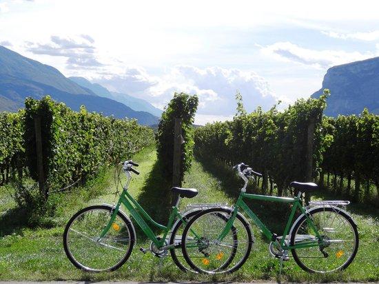 Hotel Antico Borgo : Bike ride through Arco, Dro to vineyards in Sarche