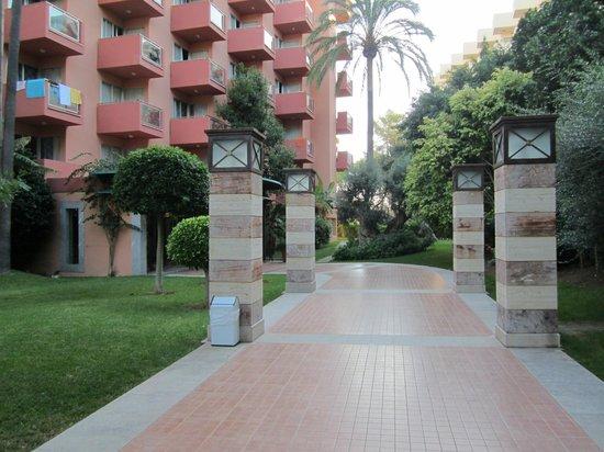 Ola Hotel Maioris : Entrée1