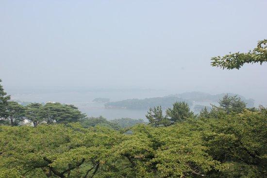 Saigyo Modoshi no Matsu Park