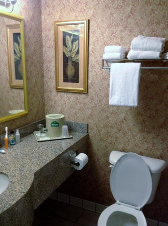 Wingate by Wyndham St Augustine: Bathroom