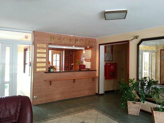 Hotel Jantar: Reception