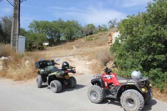 Quad Ventura : Some of the bikes